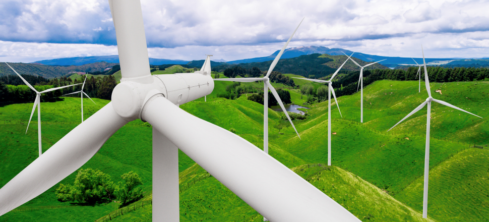 """Discussion of innovations in the """"green tariff"""""""